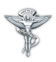 Mesme Luc - Chiropracteur